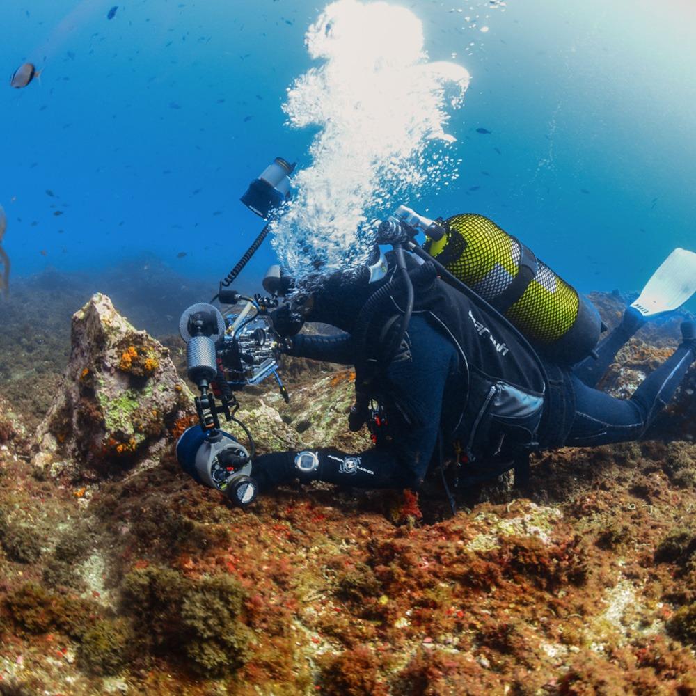 fotografo-submarino-la-herradura