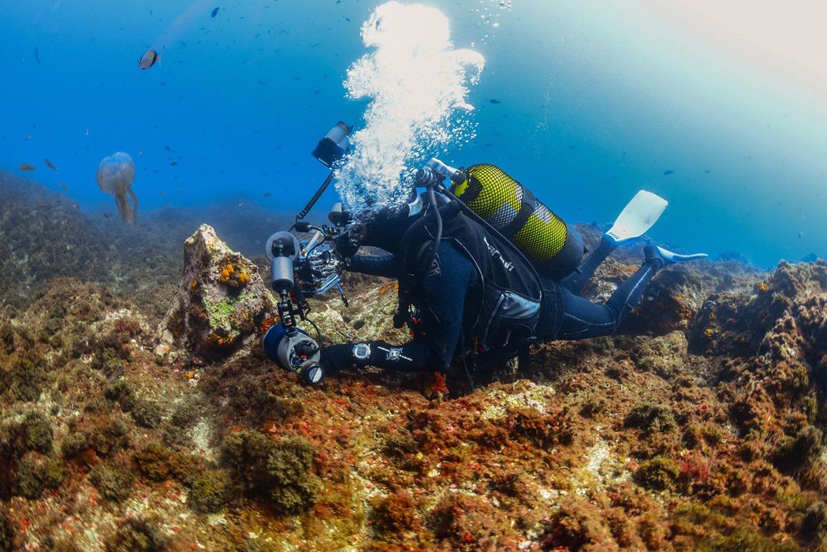 curso-fotografo-submarino