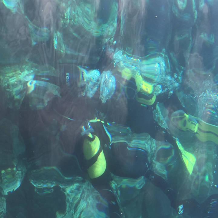 curso-discover-scuba-diving-la-herradura